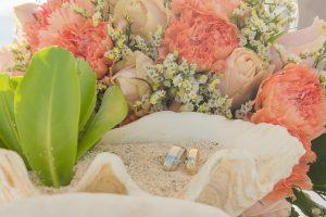 wedding rings display on shells