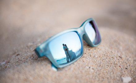 reflection of couple through sunglass